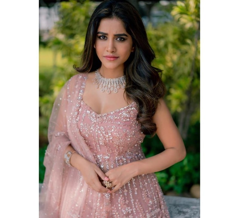 Nabha Natesh Age, Biography, Height, Family, Boyfriend & More